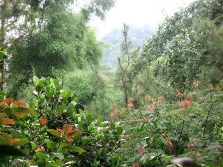 Bukit Turgo, Lokasi Wisata Baru di Sekitar Yogya