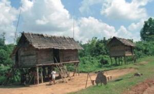 Rumah suku Anak Dalam di sekitar Taman Nasional