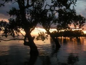 Senja di Kaimana