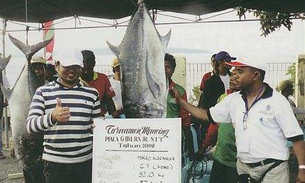 ikan ikan tenggiri besar dan kuwe yang kemudian diburu