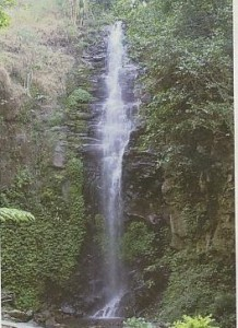 Air Terjun Trawas