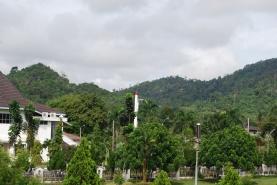 Bukit Betung