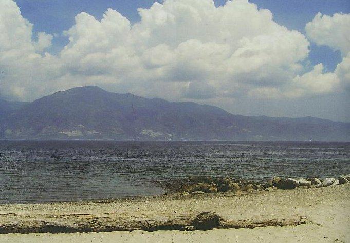 Taipa Beach: Pantai Elok di Tengah Kota