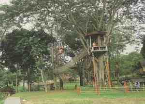 Kebun Wisata Pasirmukti: Memetik Buah Lalu Bermain Lumpur