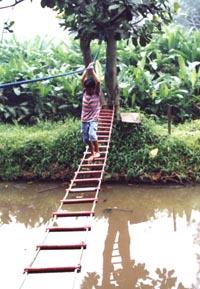 Wisata Tanah Tingal: Akhir Pekan yang Manis bagi Keluarga
