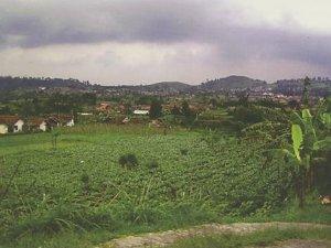 Desa Wisata Wangunharja – Begitu Kental Ritual Tradisional