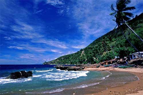 Terpikat Keindahan Taman Laut Olele