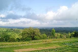 Agro Pelaga, Wisata Alam di Bali