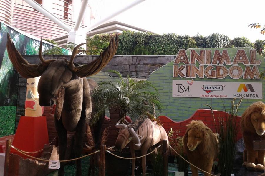 Tempat Liburan Baru di Bandung: Animal Kingdom