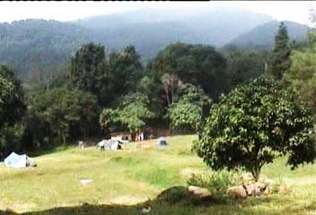 hutan-sukamantri