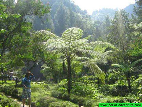 Hutan Wisata Sukamantri