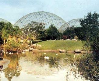 Taman Burung TMII Sebuah Oase di Bawah Kubah