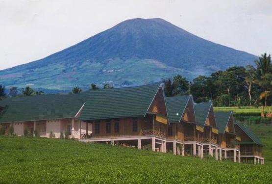 Menyeruput Secangkir Teh di Gunung Dempo