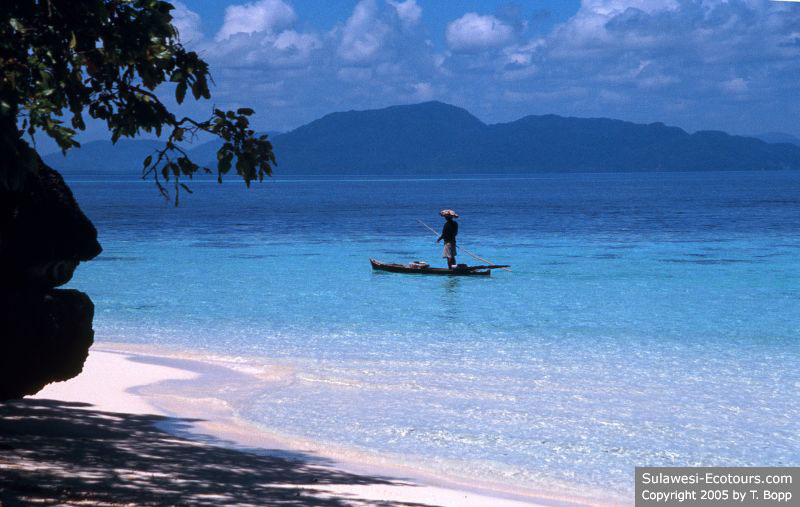 Indahnya Pulau Hari