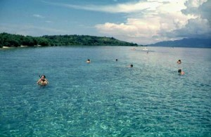 Snorkeling di Perairan Pulau Menjangan