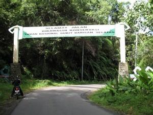 taman-nasional-bukit-barisan