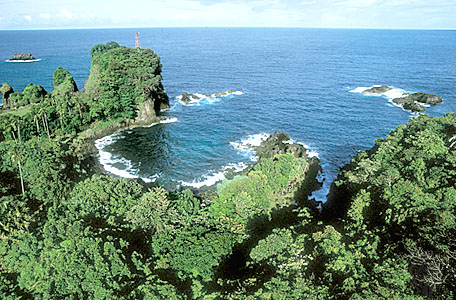 Menjelajah Ujung Kulon
