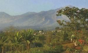 Desa Trawas