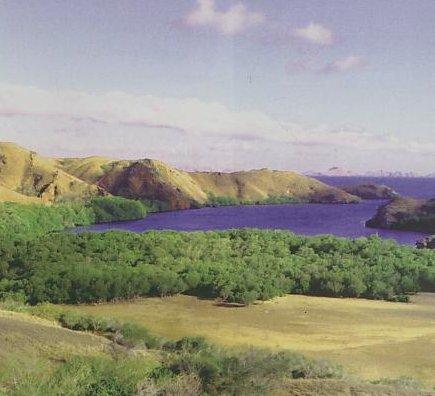 Daya Pikat Pulau Para Naga