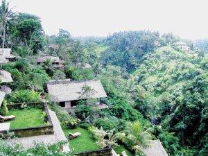 Menyepi dan Relaksasi di Ubud