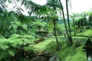 Baturaden Tawarkan Beragam Wisata