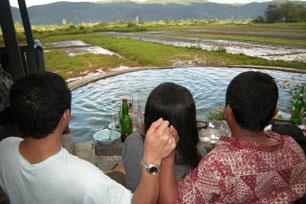 Aek Rara, Kolam Air Soda di Tarutung